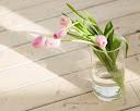 موسوعة رائعة من الورود Sweet-flowers%20%282%29