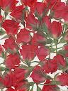 موسوعة رائعة من الورود Pattren%20%282%29