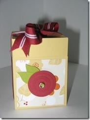Mays Box2