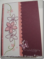 Raspberry Card