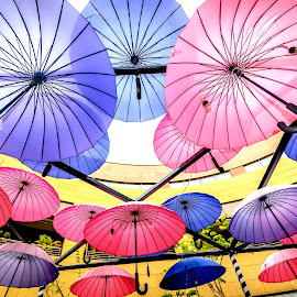 Floating Umbrella by Jijo George - Artistic Objects Other Objects ( sky, building exterior, horizontal, colors, umbrella, parasol, summer, happiness, sunlight, sunbeam, sun, multi colored )