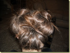 hair and bows 004