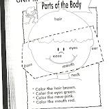 parts of body2.jpg