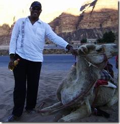 DMB Petting Camel