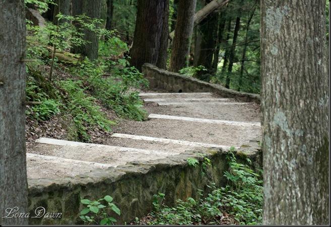 CedarFalls_Steps