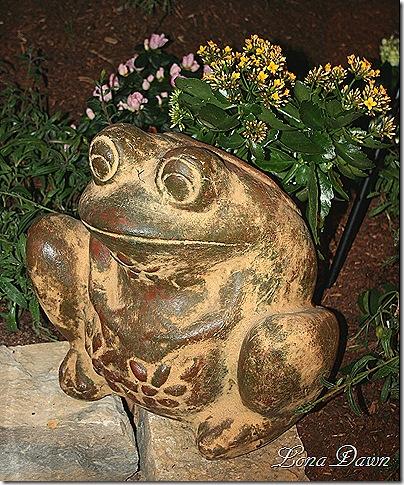 HGS_Frog