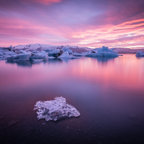 Dreamscape by Francesco Riccardo Iacomino - Landscapes Waterscapes ( iceberg, vatnajokull, mountain, change, wildlife, ocean, travel, beach, beauty, landscape, frozen, business, sky, melting, nature, cold, ice, snow, pink, arctic, climate, water, jokulsarlon, lagoon, park, national, global, beautiful, white, sea, lake, tourism, rough, glacier, iceland, environment, winter, blue, sunset, cloud, natural )