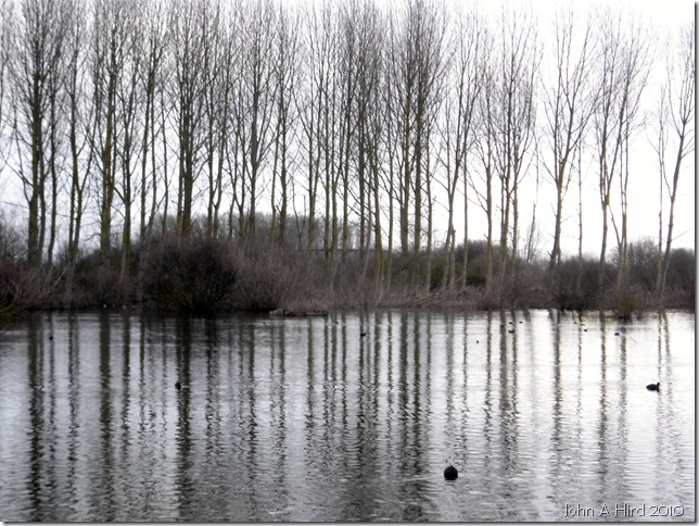 2010-02-07 007