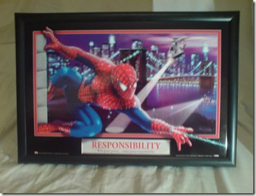 Spiderman Picture