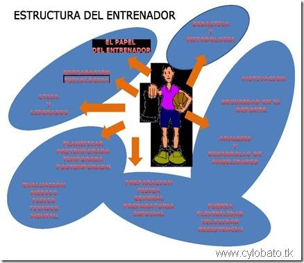 estrutura del entrenador