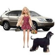 Barbie NoVa I