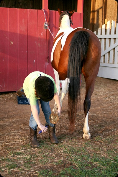 Horseback riding lesson clean hooves