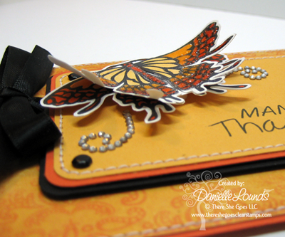 OrangeButterfly_ManyThanks_Closeup
