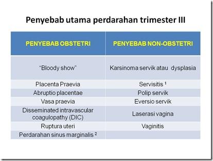 Grafik PAP 2
