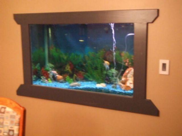 [fish tank in wall 4[4].jpg]