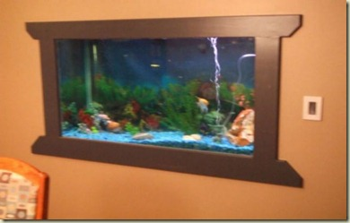 fish tank in wall 4