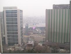Seoul Hotel View
