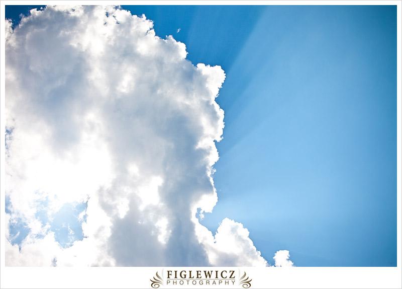 ShadyWagonRanch-FiglewiczPhotography-NorthCarolina-034.jpg