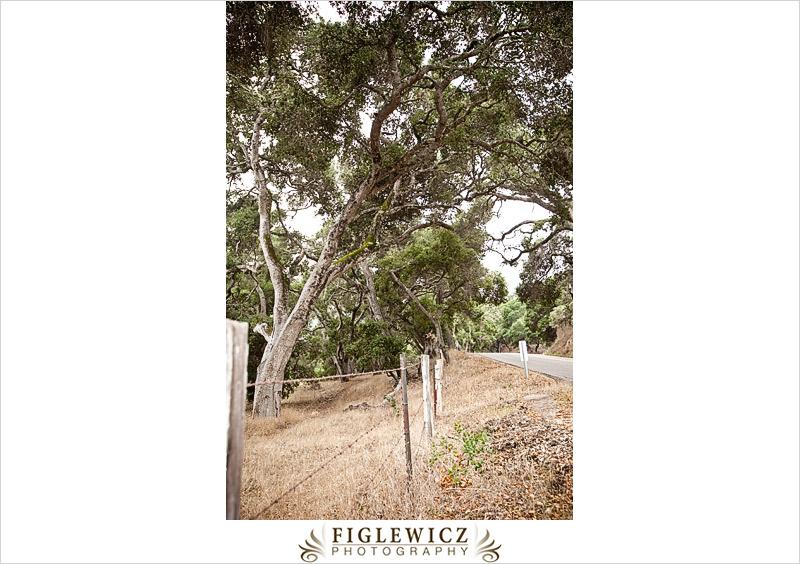 FiglewiczPhotography-Jalama-0002.jpg