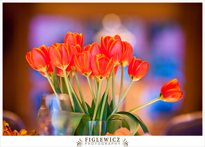 FiglewiczPhotography-AnnaandGabe-066.jpg