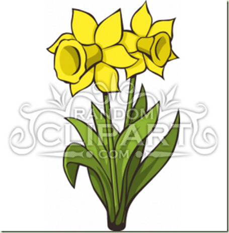 cartoon-daffodils-1033