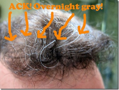 overnight-gray-hair