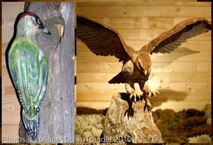 2010 07 154 Uno Birds 2