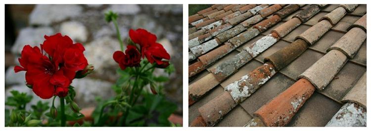 Picnik collage 6