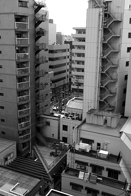 Shinjuku Mad - Birds fly faster than time 01