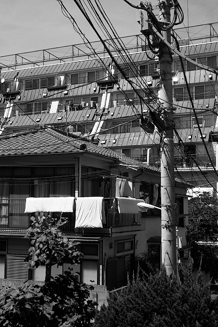 Shinjuku Mad - Birds fly faster than time 16