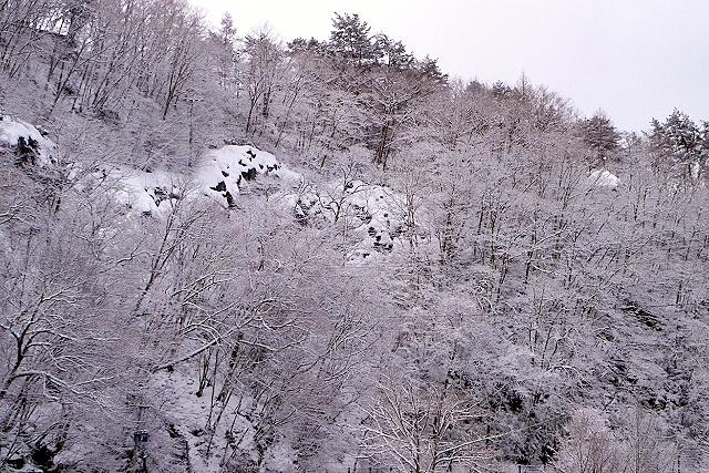 Shinjuku Mad - Paysage d'hiver 01