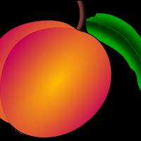 coredump_Peach.png