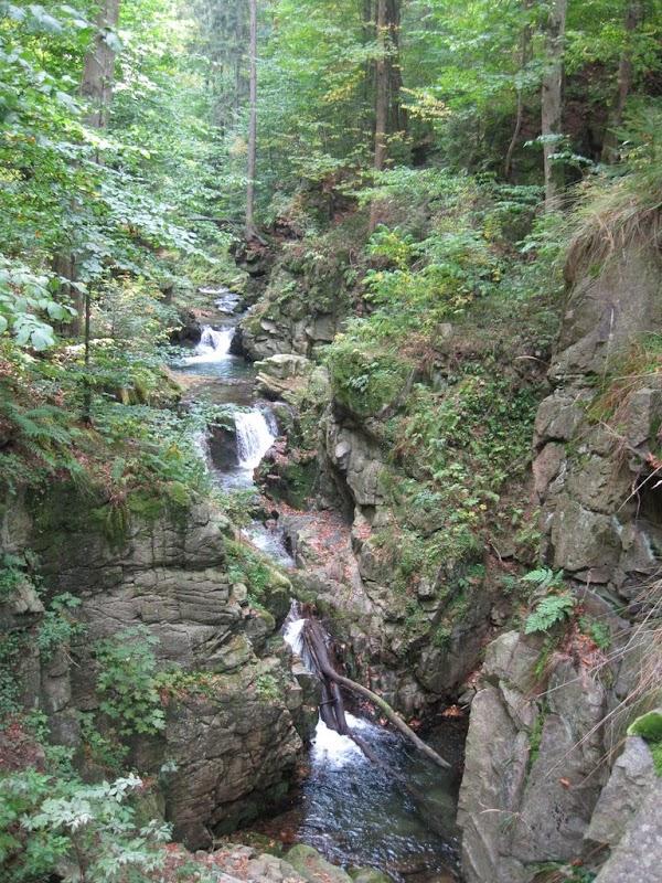 Potok Wilczki