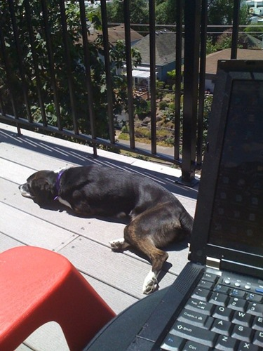 telecommuting