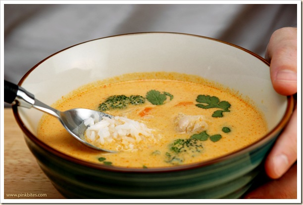 Chicken and Coconut Thai Curry Soup