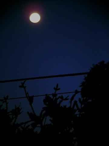 The moon shines bright: AWatson-Will