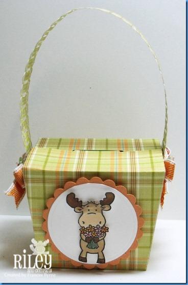 Riley1011 Giftbox2 wm
