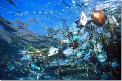 plastico_oceano_basura_flotante