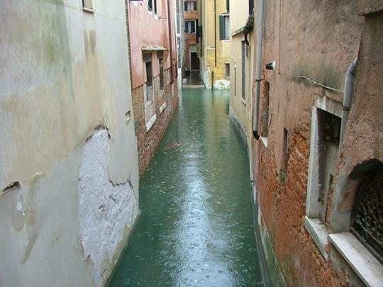 Acqua Alta a Venessia 028