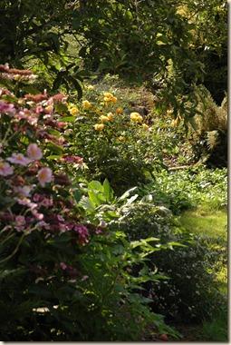 garden 173