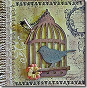 A-Front cover of Bird Cage Album