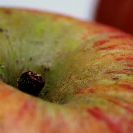 Apple by Nikki Wilson - Food & Drink Fruits & Vegetables ( juicy, fruit, food, apple, ripe,  )