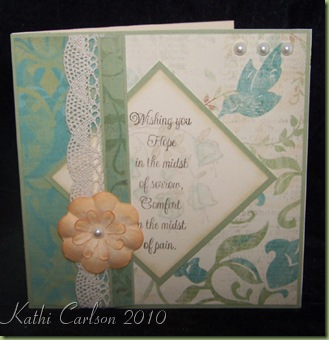 Sympathy Sentiments_Feb 2010