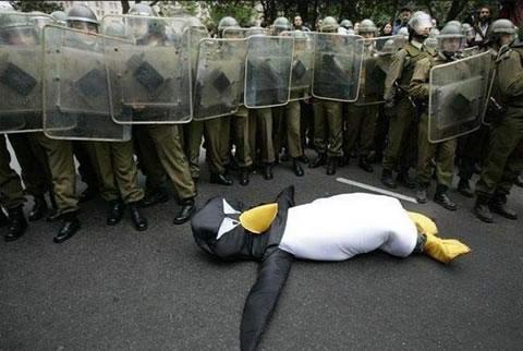 http://lh6.ggpht.com/_fw7iF68JR8k/SzwtALoJVfI/AAAAAAAAprk/Dh6ATCQ_9EY/GP4700558riot-police-rubber.jpg