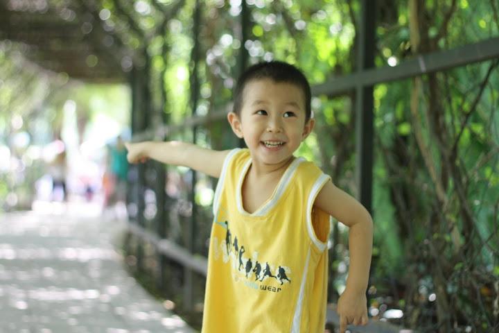 lianhuashan1