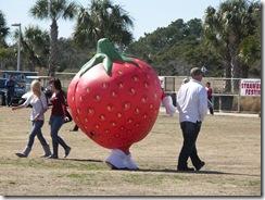 Strawberry Festival (8)