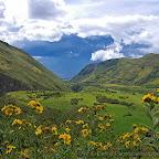 Ecuador by Daniel Petrescu