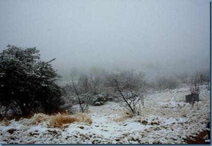 Snowy Day 640x426