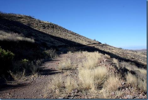 Mining Trail on Mtn (700)