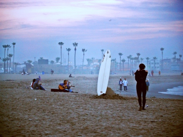 Venice Beach Surfing